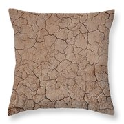 Earth's Crust II Throw Pillow
