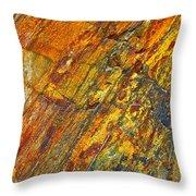 Earths Palette Throw Pillow