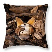 Earthstar Opening Throw Pillow