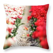 East And West A Dutch Tulip Story Throw Pillow