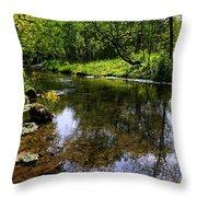 East Beaver Creek Throw Pillow
