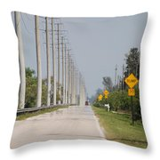 East Bound And Down Throw Pillow