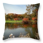 East Coast Autumn Throw Pillow