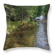 East Jordan 4 Throw Pillow
