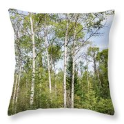 East Jordan 9 Throw Pillow