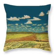 East Of Flagstaff Arizona Throw Pillow