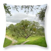 East Ridge Trail -  Spring Throw Pillow