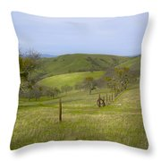 East Ridge Trail Barbed Wire Throw Pillow