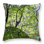 East West Gate 3 Throw Pillow