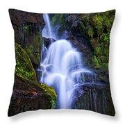Eastatoe Falls Detail #8 Throw Pillow