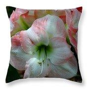 Easter Amaryllis Throw Pillow