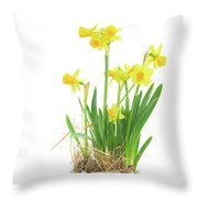 Easter Eggs Hunt Throw Pillow