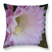 Easter Lily Cactus East 2 Throw Pillow