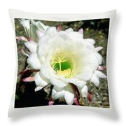 Easter Lily Cactus Flower Throw Pillow