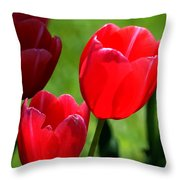 Easter Tulips Throw Pillow