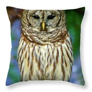 Eastern Barred Owl Throw Pillow