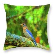 Eastern Blue Bird With Flair Throw Pillow
