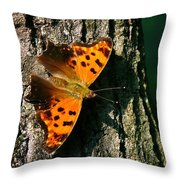 Eastern Comma Butterfly Throw Pillow