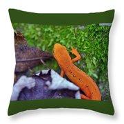 Eastern Newt Throw Pillow