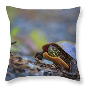 Eastern Painted Turtle Chrysemys Picta Throw Pillow