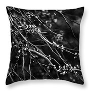 Eastern Redbud In Black And White Throw Pillow