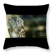 Eastern Screech Owl-6950 Throw Pillow