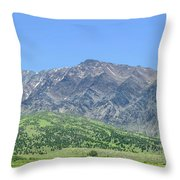 Eastern Sierra July Throw Pillow