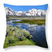 Eastern Sierra Mountains Throw Pillow