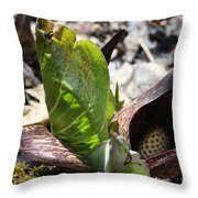 Eastern Skunk Cabbage  Throw Pillow