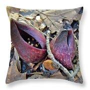 Eastern Skunk Cabbage Spathes - Symplocarpus Foetidus Throw Pillow