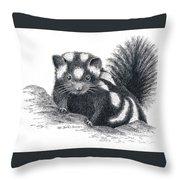 Eastern Spotted Skunk Throw Pillow