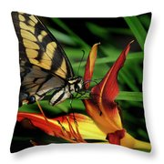 Eastern Tiger Swallow Tail Butterfly Throw Pillow