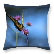 Eastern Tiger Swallowtail And Blue Sky Throw Pillow