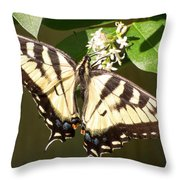 Eastern Tiger Swallowtail  Butterfly Wingspan Throw Pillow