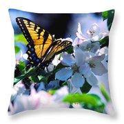 Eastern Tiger Swallowtail Throw Pillow by Thomas R Fletcher