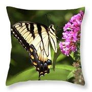 Eastern Triger Swallowtail Throw Pillow