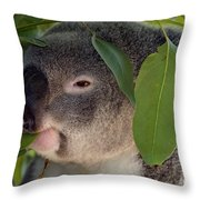 Eat Your Greens Throw Pillow by Mike  Dawson