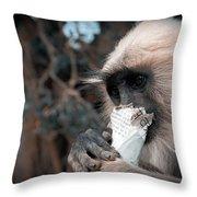 Eating Monkey Throw Pillow