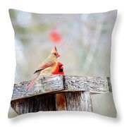 Eating Out With Dad Throw Pillow