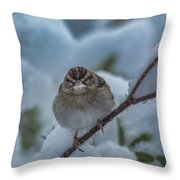 Eating Snow Throw Pillow