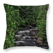 Eau Claire Gorge Colour Throw Pillow