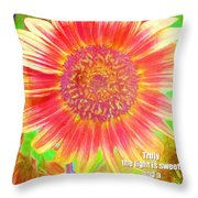 Ecclesiastes 11 7 Throw Pillow