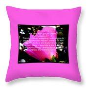 Ecclesiastes 3 A Time For Everything Throw Pillow