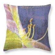 Ecclesiastes 9 6 Throw Pillow