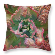 Echeveria Plant At Balboa Park 2 Throw Pillow