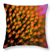 Echinacea Coneflower Abstract Throw Pillow