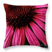 Echinacea IIi Throw Pillow