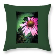 Echinacia Flower In The Rain Throw Pillow