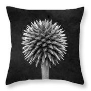 Echinops Monochrome Throw Pillow