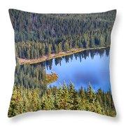 Echo Lake 7 Throw Pillow